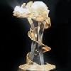 Переможці «Телетріумфу–2012»