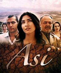 У новому році на «1+1» стартує новий турецький серіал «Асі»