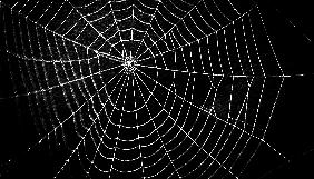Другой интернет: секреты и возможности DarkWeb