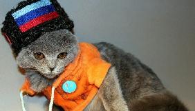 Откуда берутся «сепаратистские коты» на BBC?