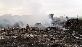 Родичі загиблих вимагають відновлення пошуків після знахідок нідерландського журналіста на місці катастрофи MH17 на Донбасі