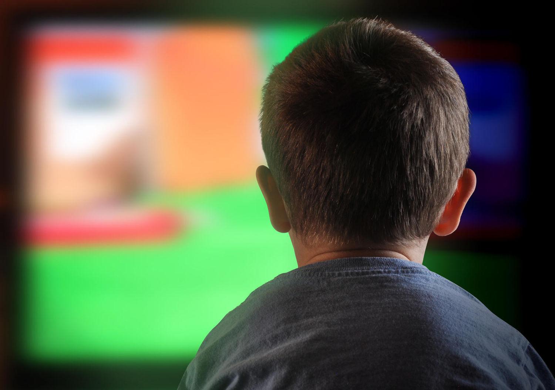 Cпіврегулювання в Німеччині: на сторожі ТБ, радіо, інтернету та комп'ютерних ігор