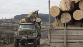 Кримінальна Бережанщина: підпали машин, погрози та залякування через…ліс