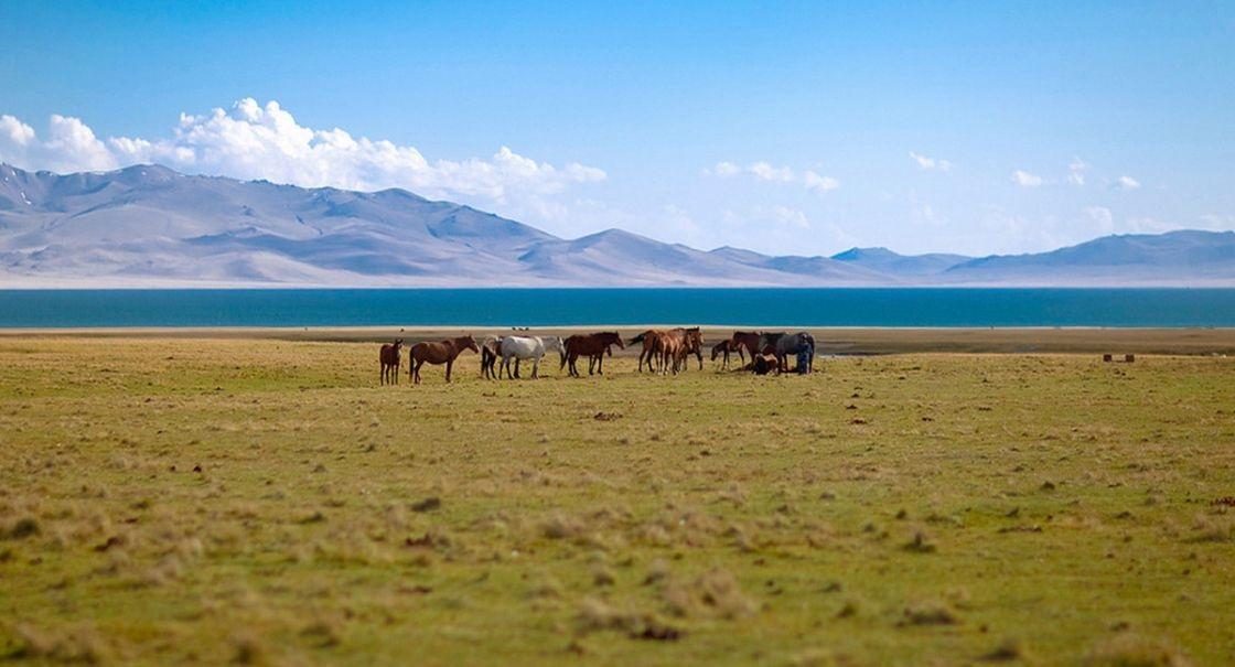 Киргизские СМИ: все ближе к авторитаризму