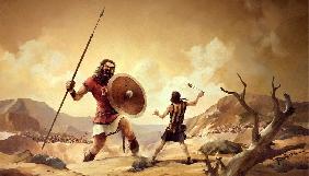 Давид проти Голіафа: як один провайдер судився з міськрадою й виграв