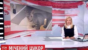 Майже детективні історії: хто надзюрив у цукор і не видалився із «ВКонтакте». Моніторинг теленовин за 14–19 серпня 2017 року