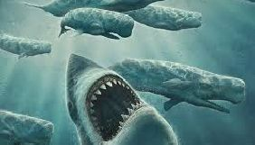 16 листопада експерти ІМІ проведуть публічну дискусію про взаємодію ГО і ЗМІ «Кити і акули»