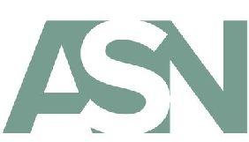 Сайт АСН виставлено на продаж – головред