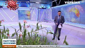 Сенсаційна трава. Моніторинг теленовин 2–8 березня 2020 року