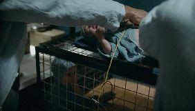 Прокуратура відкрила провадження через можливе катування дітей у фільмі «Дау. Дегенерація»