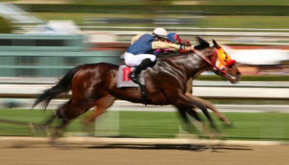 Конкурс на управління УМХ: перегони темних конячок. Медіапідсумки 25–30 серпня 2020 року