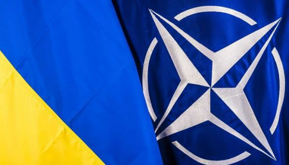 Білий дім виправив заяву своєї представниці про те, що США підтримують вступ України до НАТО